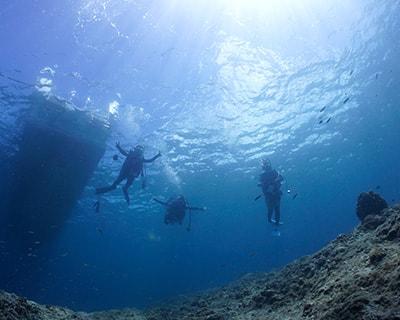プール体験ダイビング