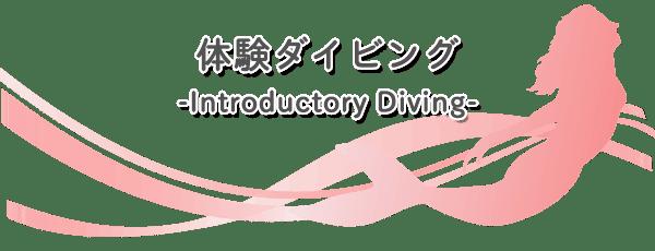 ダイビングショップRIZE 体験ダイビング詳細