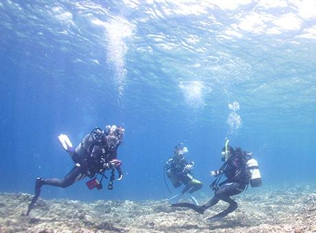 ダイビングライセンス取得の流れ:海洋講習